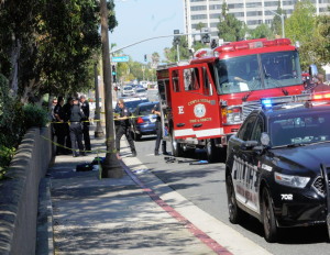 ATTEMPTED SUICIDE BY FIRE APPARATUS IN CA